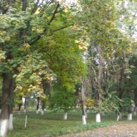 Наш парк осенью.jpg
